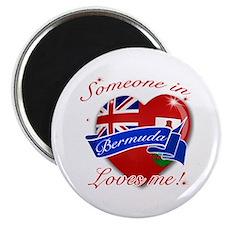 Bermuda Flag Design Magnet