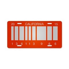 BTTF Future Aluminum License Plate