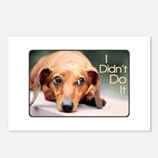 """""""I Didn't Do It"""" Dachshund Postcards (Package of 8"""