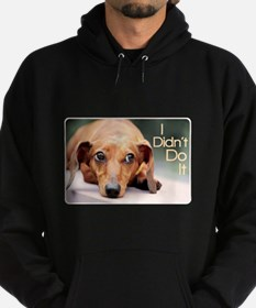 """I Didn't Do It"" Dachshund Hoodie (dark)"