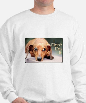 """I Didn't Do It"" Dachshund Jumper"