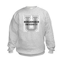 Bergamasco UNIVERSITY Sweatshirt