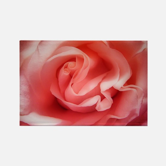 Heart of a Rose Rectangle Magnet (10 pack)