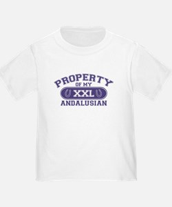 Andalusian PROPERTY T