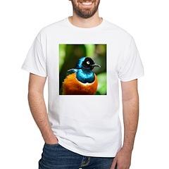 Superb Starling Shirt