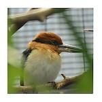 Guam Micronesian Kingfisher Tile Coaster