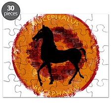 Bucephalus Puzzle