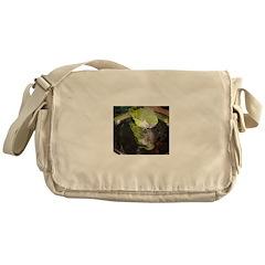 Quaker Messenger Bag