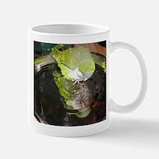 Quaker Mug