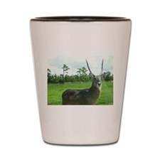 WATERBUCK OF CENTRAL AFRICA Shot Glass