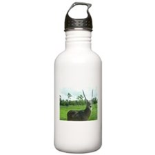 WATERBUCK OF CENTRAL AFRICA Water Bottle