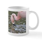 Chilean Flamingo Mug