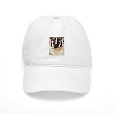 Badger Baseball Cap