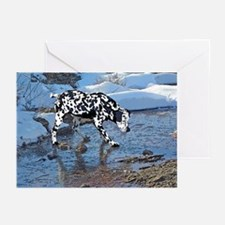 Dalmation on ice Greeting Cards (Pk of 20)