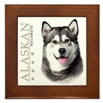Alaskan Malamute Framed Tile