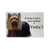 Yorkie Stickers & Flair