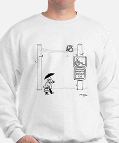 Handicapped Accessible Pole Sweatshirt
