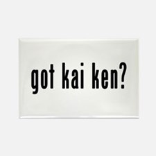 GOT KAI KEN Rectangle Magnet (10 pack)