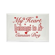 Canaan Dog Designs Rectangle Magnet (100 pack)