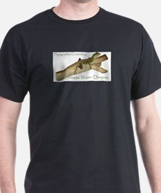 chinesewaterlizard_shirt[1] T-Shirt