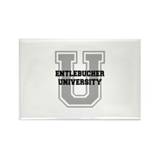 Entlebucher UNIVERSITY Rectangle Magnet