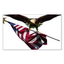 Eagle & Flag Decal