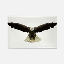 Cool Bald eagle flag Rectangle Magnet