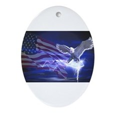 Eagle Storm Ornament (Oval)
