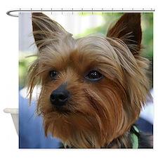 Yorkshire Terrier Shower Curtain