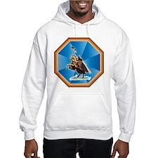 Knight Templar Hoodie