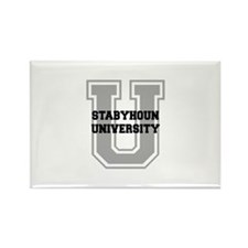 Stabyhoun UNIVERSITY Rectangle Magnet