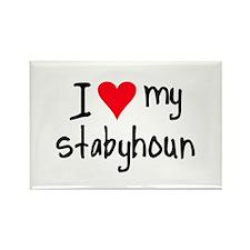 I LOVE MY Stabyhoun Rectangle Magnet