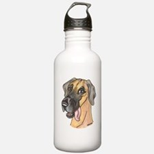 NF Sly Water Bottle