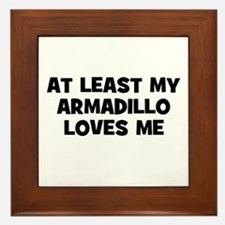 At Least My Armadillo Loves M Framed Tile