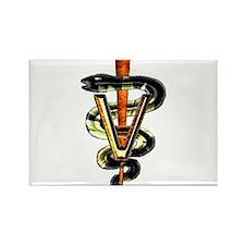 Veterinary Caduceus Rectangle Magnet