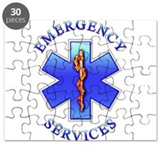 EMS Puzzle