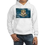Connecticut Flag Hooded Sweatshirt