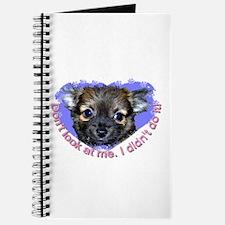 Chihuahua (long hair) Journal