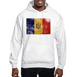 Moldova Flag Hooded Sweatshirt