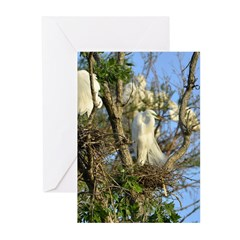 great egret crop1100x1500 Greeting Cards