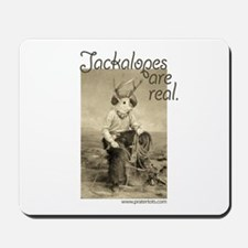 Jackalopes are real Mousepad