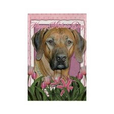 Mothers Day Pink Tulips Ridgeback Rectangle Magnet