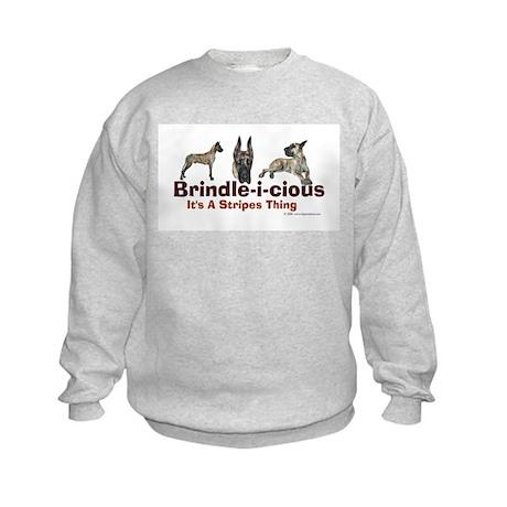 Brindle-i-cious 3 It's a Stri Kids Sweatshirt
