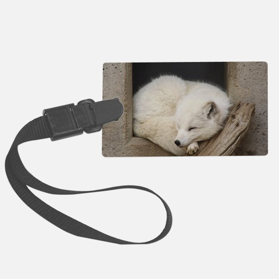 Sleeping corner Luggage Tag