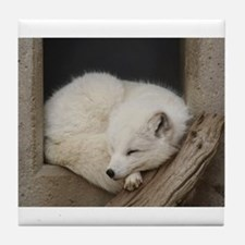 Sleeping corner Tile Coaster