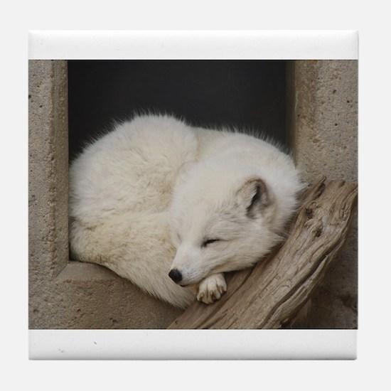 Sleeping corner Tile Coaster