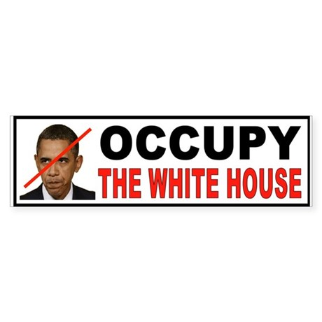 OCCUPY DC Sticker (Bumper)