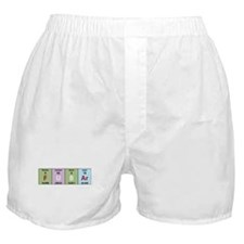 Chemistry Fubar Boxer Shorts
