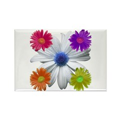 Daisies Rectangle Magnet