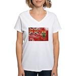 Ontario Flag Women's V-Neck T-Shirt